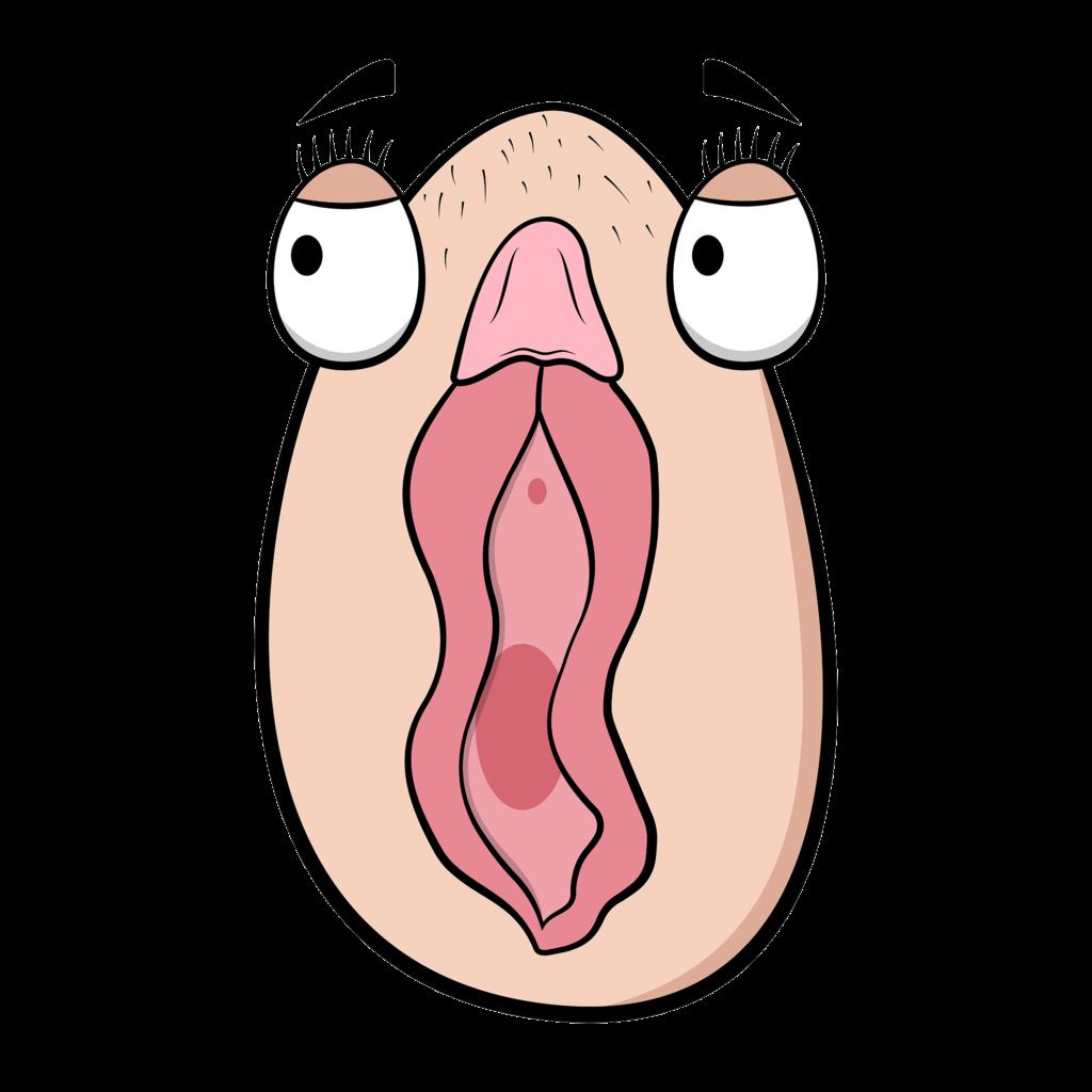 El clítoris más tímido de las diferentes clases de vulvas